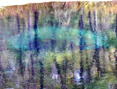 Ichetucknee-Springs
